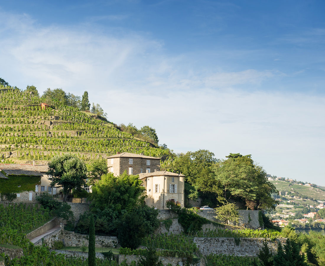 Great-Domaines-Chateua-Grillet-1