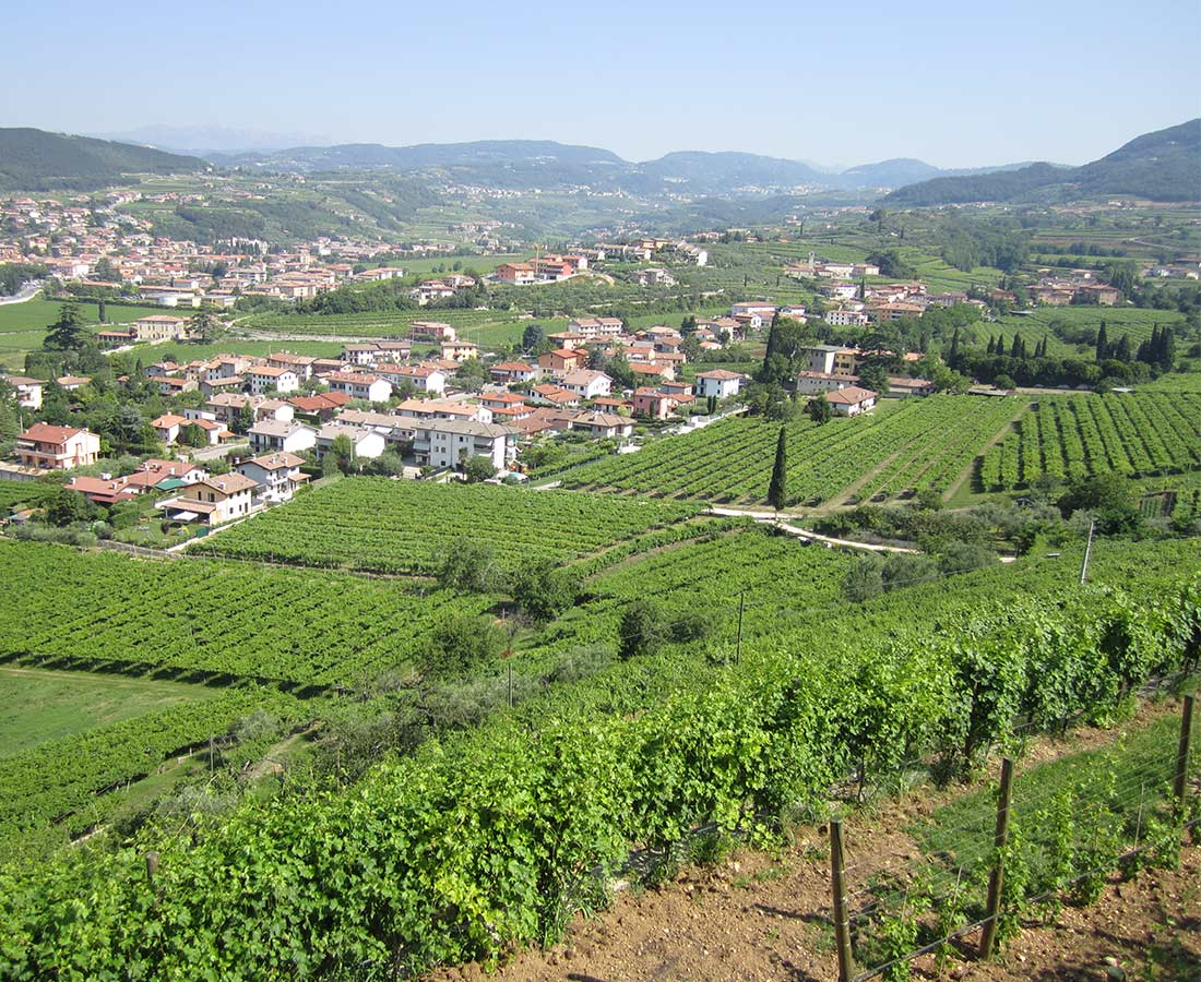 Great-Domaines-Guiseppe-Quintarelli