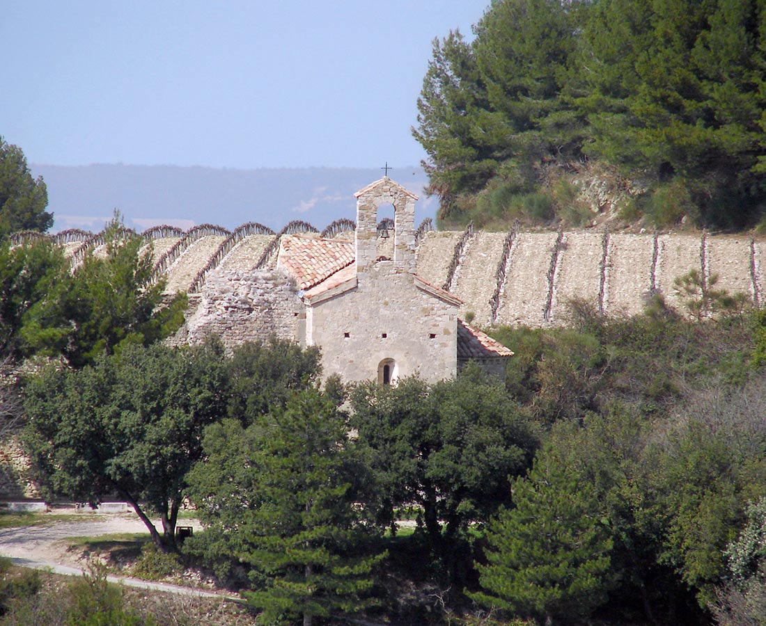 Great-Domaines-Saint-Cosme