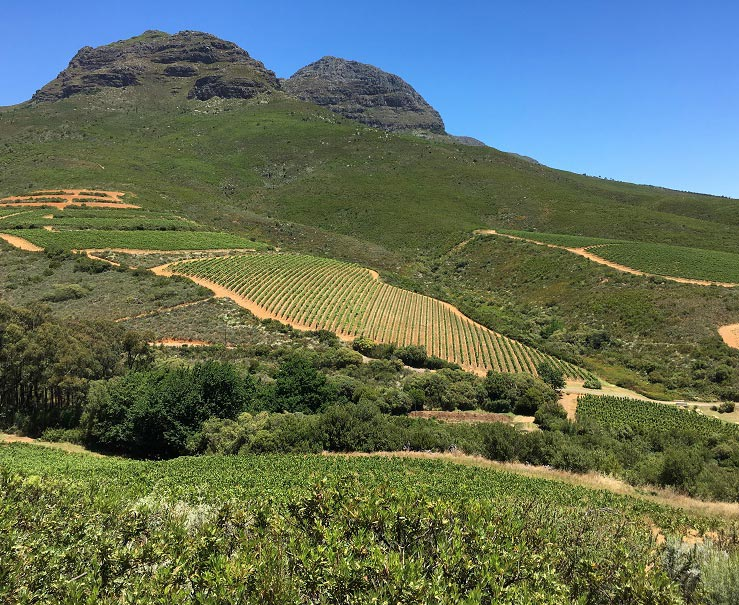 Great-Domaines-keermont-2